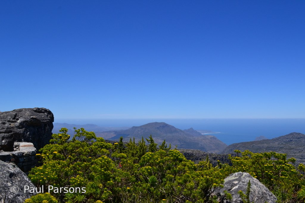 One of the views from Table Mountain