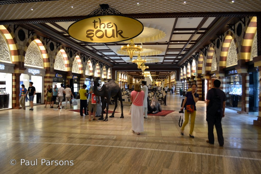 The Dubai Mall (4)